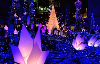 Carretta Shiodome Illuminations 2019