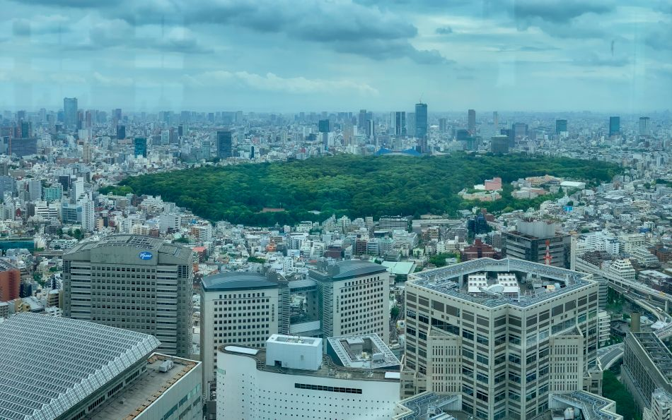 View of Yoyogi Park from Tokyo Metropolitan Government Building